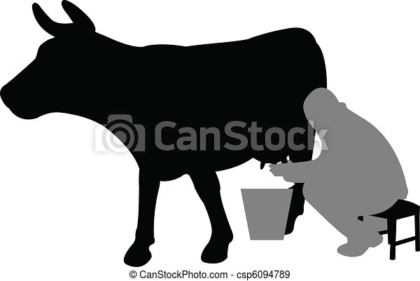 milhing a cow - csp6094789