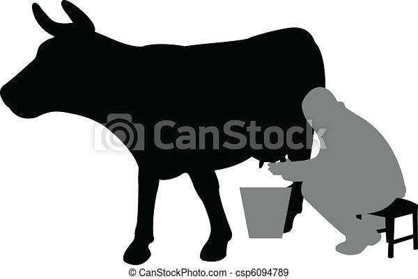 milhing a cow - csp6094789