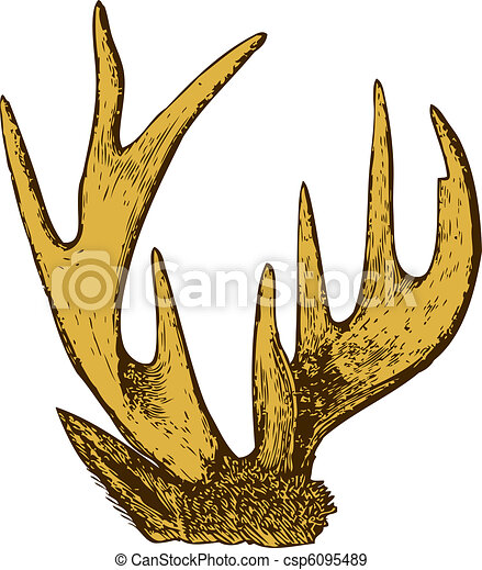 Trophy of antlers . - csp6095489