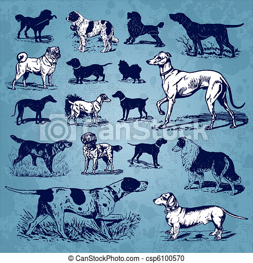 dogs vintage set (vector) - csp6100570