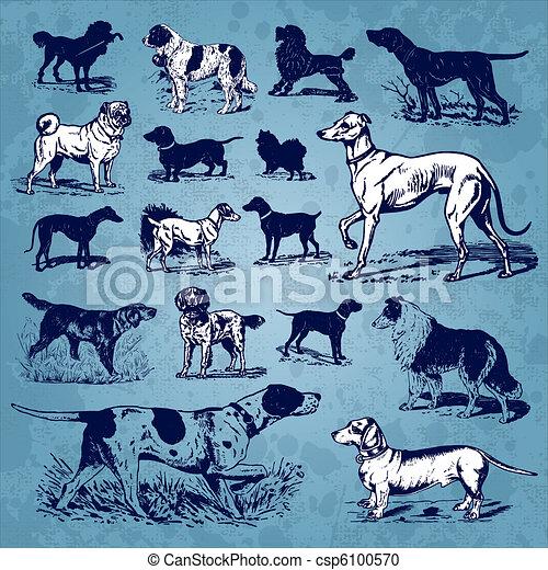dogs vintage set (vector) - csp6100570