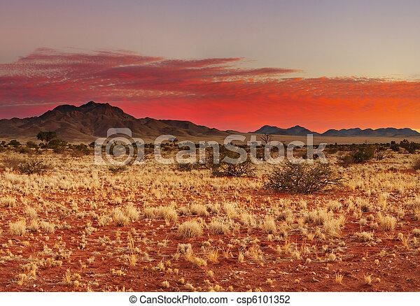 Kalahari Desert - csp6101352
