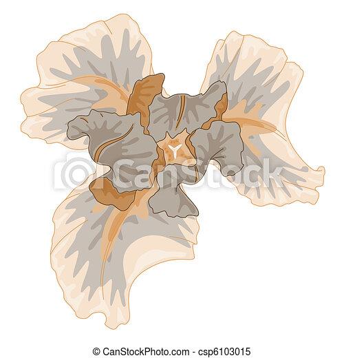 Gentle watercolor iris.  - csp6103015