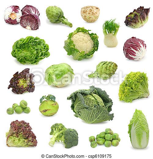 蔬菜, 收集, 卷心菜, 綠色 - csp6109175