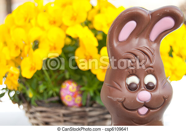 Easter bunny in front of flowers - csp6109641