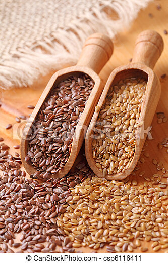 flax seeds - csp6116411