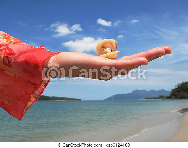 Seashell on the hand against sandy beach on Langkawi, Malaysia - csp6124169