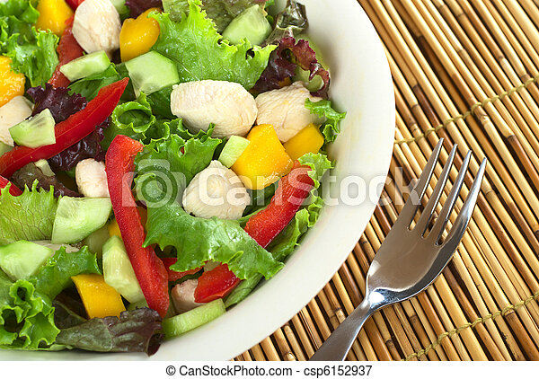 Fresh chicken salad with lettuce, mango, red bell pepper and cucumber (Selective Focus, Focus on the salad on the right) - csp6152937