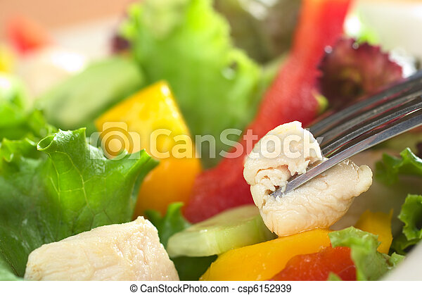 Fresh chicken salad with lettuce, red bell pepper, mango and cucumber with a piece of chicken meat on fork (Very Shallow Depth of Field, Focus on the front of the meat that is on the fork) - csp6152939