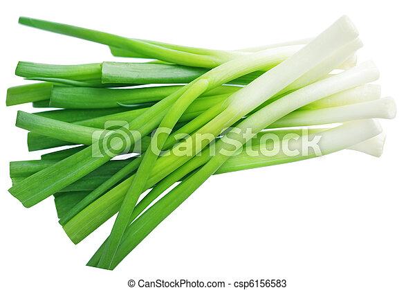 Green Onion - csp6156583