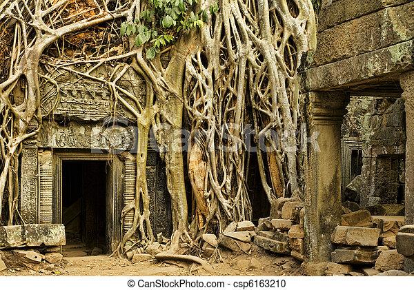 Angkor Wat - csp6163210