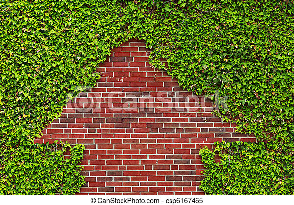 Brick wall covered by ivy leaves left a arrow shape