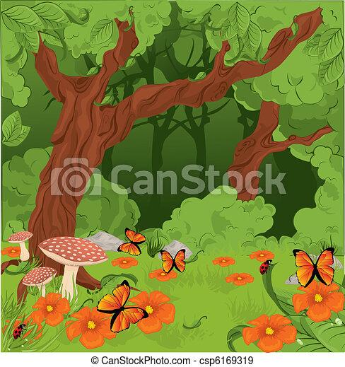 Forest background  - csp6169319