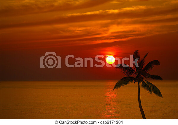 Sunset and Coconut - csp6171304