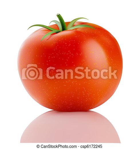 truss tomato  - csp6172245