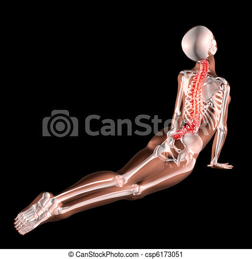 Female skeleton stretching back - csp6173051