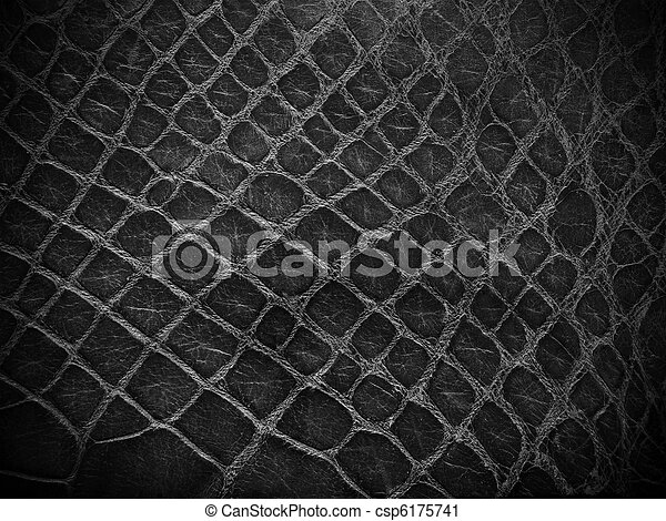 snake skin black and white close up - csp6175741