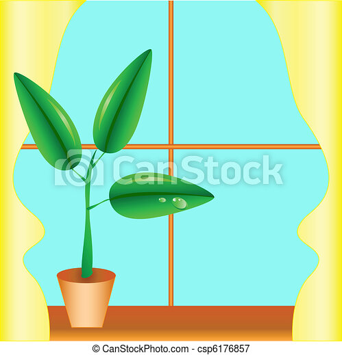 Flowerpot on a window sill, a window with yellow curtains
