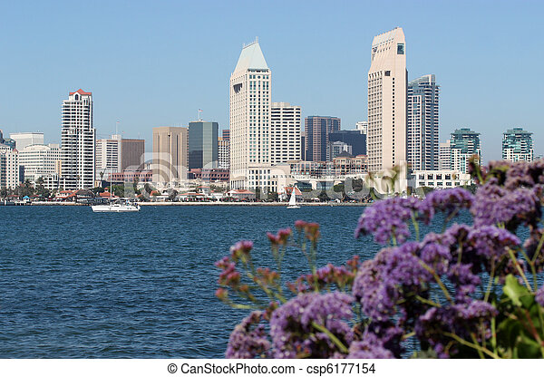 San Diego Downtown - csp6177154