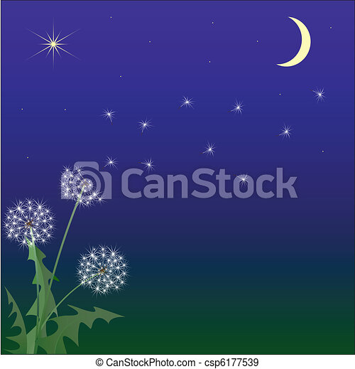 Flight of a dandelion against the night sky