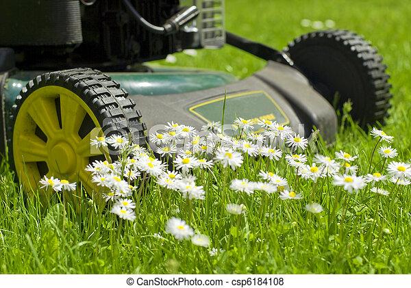 Il mondo dal punto di vista dei fiori. Can-stock-photo_csp6184108