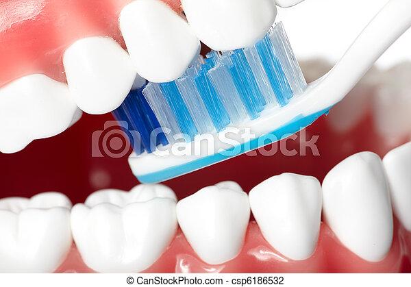 牙齒 - csp6186532