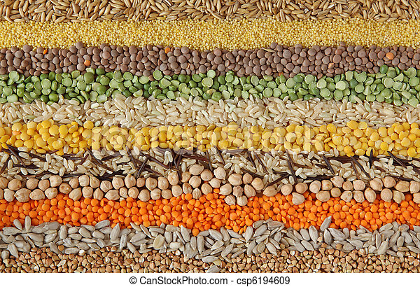 Various seeds and grains - csp6194609