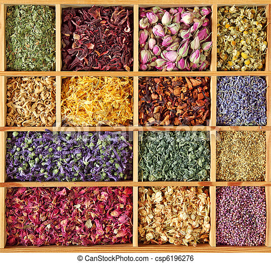 Assortment of dried tea - csp6196276