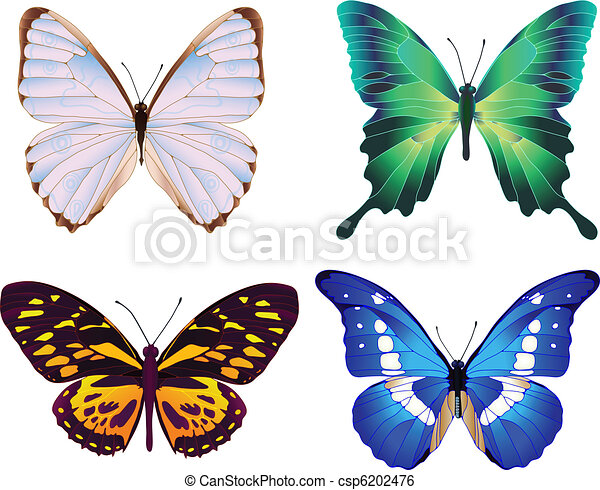 four colorful butterflies - csp6202476