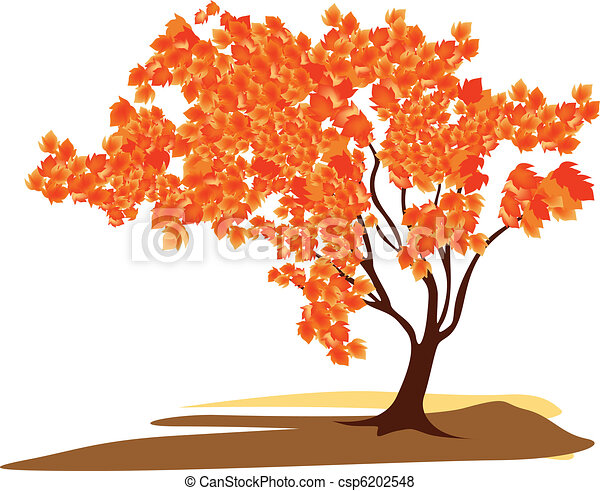 Maple tree - csp6202548