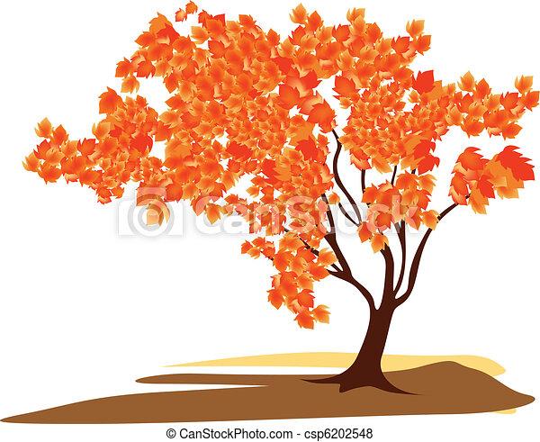 Maple tree - csp6202548