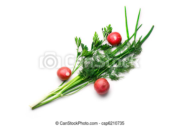 Parsley, radish, spring onions and dill isolated on white - csp6210735