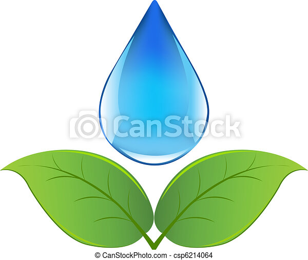 Drop Of Water With Sprout - csp6214064