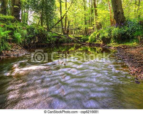 Beautiful image from very low point of view along stream flowing upstream with deep vibrant lush foliage on either bank and sunlight brightening up background - csp6216681