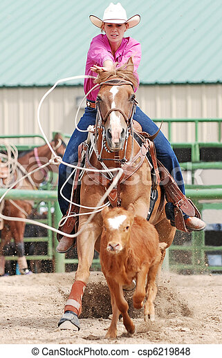 Cowgirl Roping Calf - csp6219848