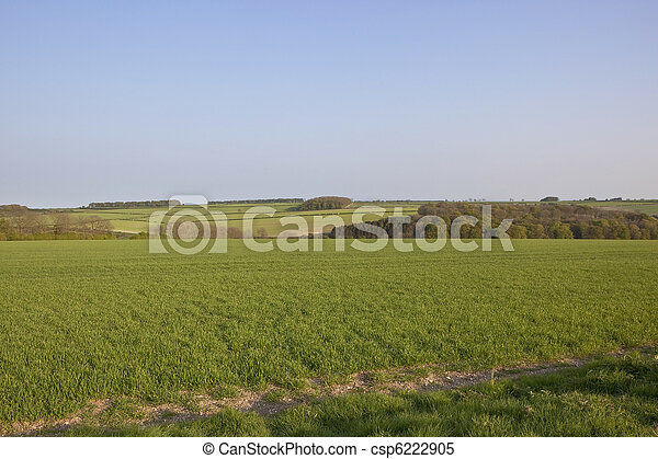 arable landscape - csp6222905