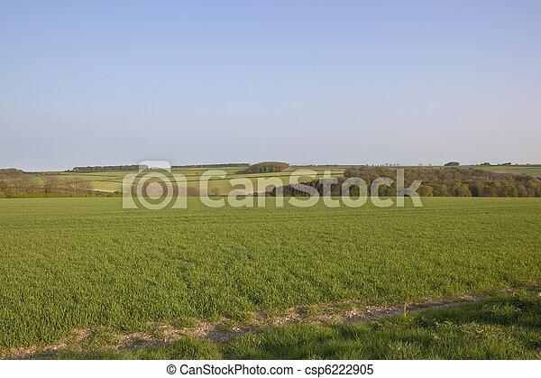 arable landscape - csp6222905