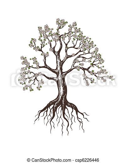 blooming tree - csp6226446