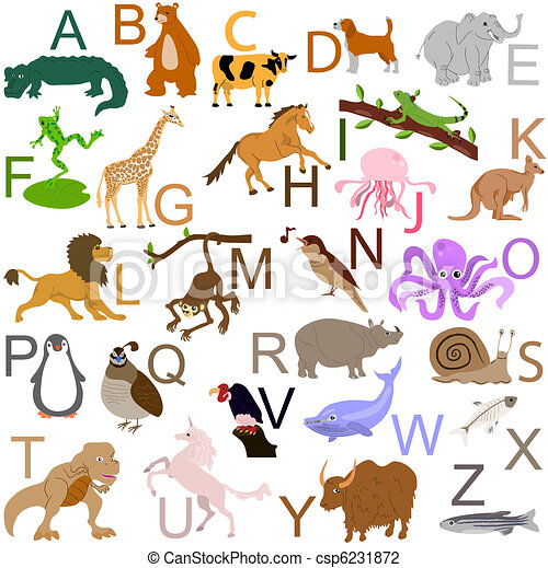 alfabeto,  animal - csp6231872