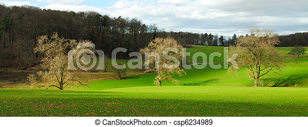 Idyllic rural landscape in nice light - csp6234989