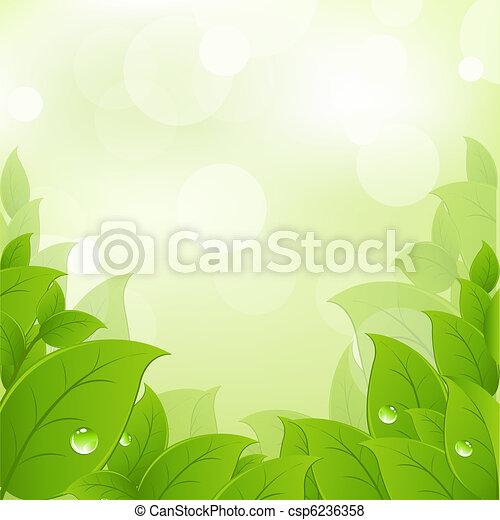 fresco, hojas, verde - csp6236358