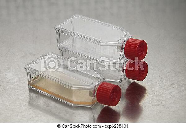 Cell culture flasks - csp6238401