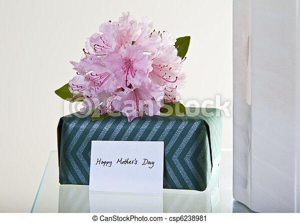 Mother\'s Day Gift