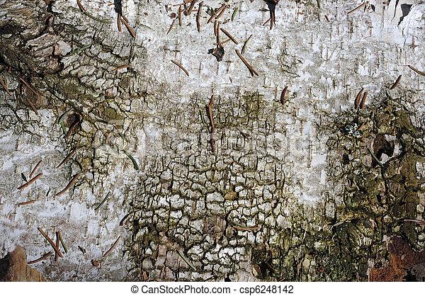 Caselio papier peint kaleido nantes prix renovation for Chantemur beziers