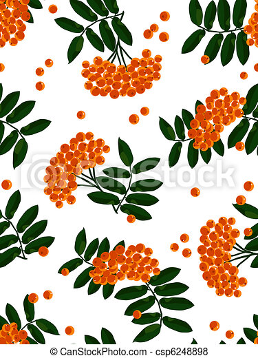 Mountain ash seamless background. - csp6248898