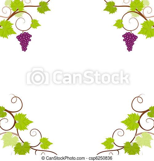 Grape vines frame. - csp6250836