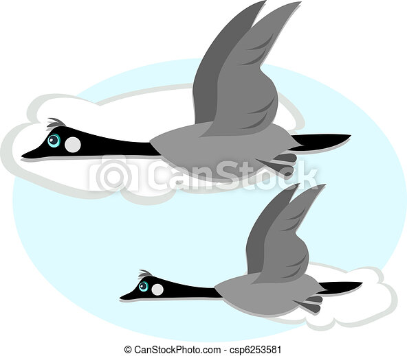 Canadian Geese in Flight - csp6253581