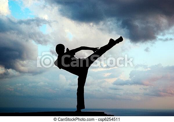 Kung fu at the edge - csp6254511