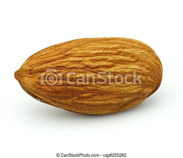 Almonds kernel - csp6255262