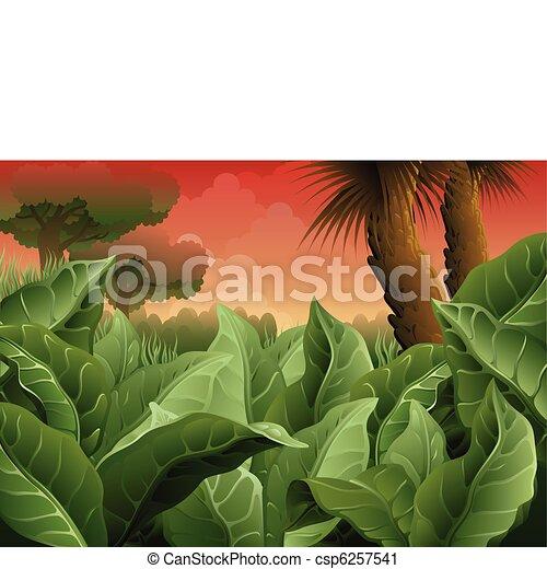 ancient jungle - csp6257541